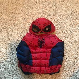 Custom Spider man 2T